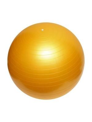 Gymnastický míč 55